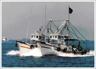 銀付き漁業 風景写真